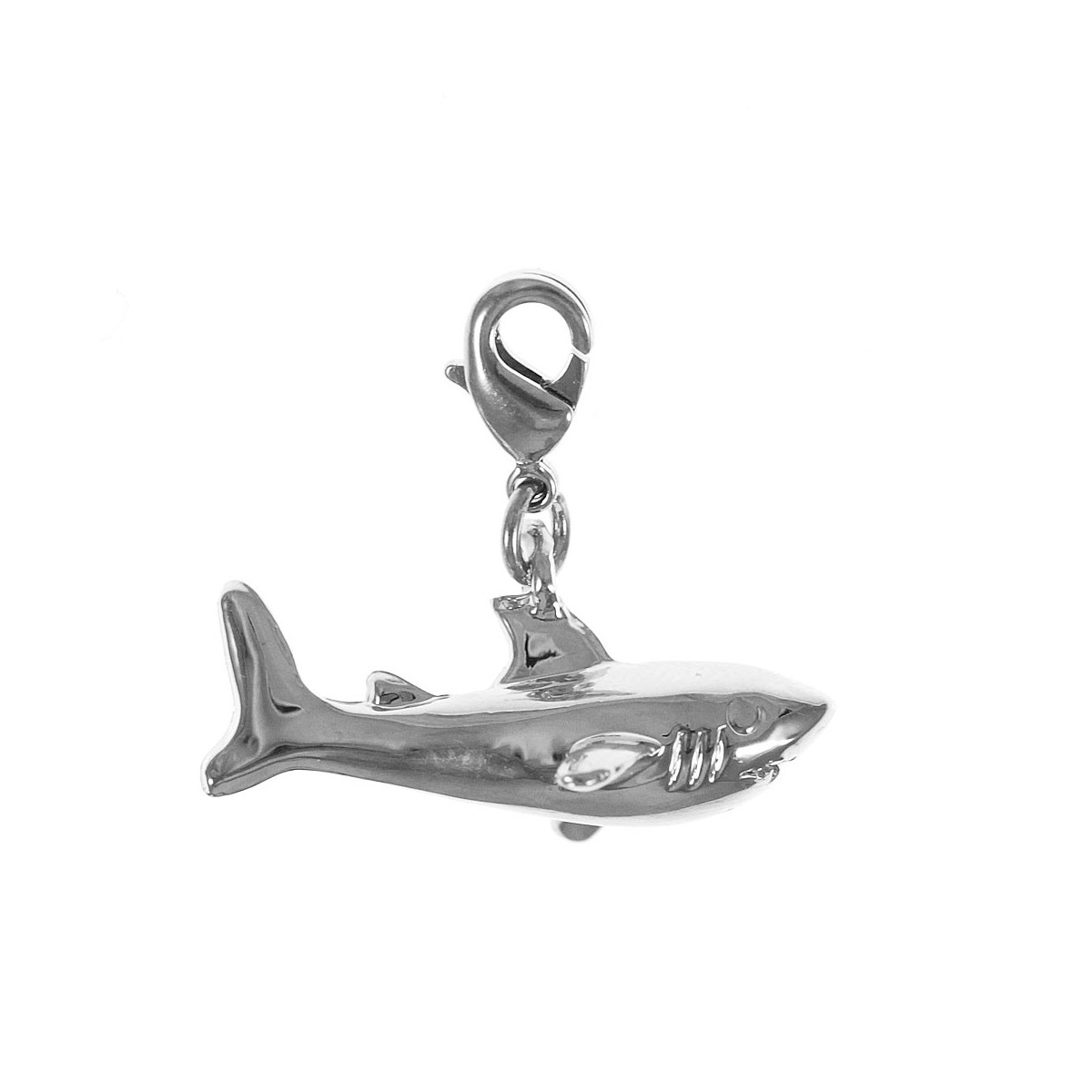 Charm requin