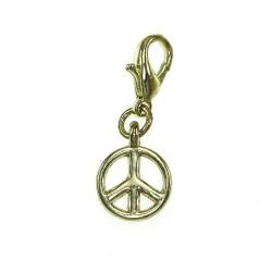 BR01 golden peace charm charm