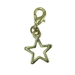 BR01 golden star charm charm